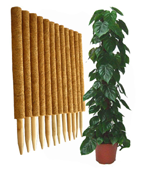 Coco Climbing Plant Support