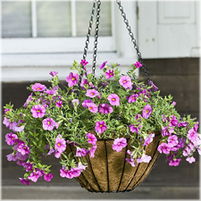 Hanging Planter Basket With Coco Liner