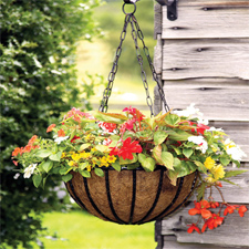 Traditional Hanging Wire Basket