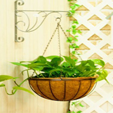 Wire Hanging Grow Basket
