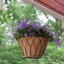 Hanging Planter Basket With Chain Hanger