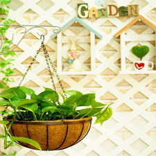 Traditional Hanging Wire Plant Basket