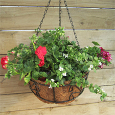 Round Hanging Basket Set With Coco Liner