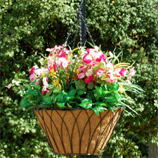 Hanging Basket With Flower Planter