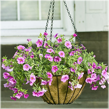 Hanging Garden Flower Basket With Coco Mat