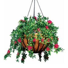 Hanging Flower Baskets for Home and Garden Decoration