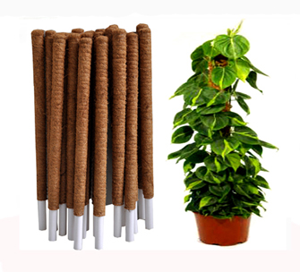 Coir Covered Plant Support for Climbers